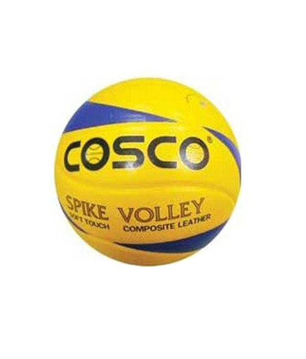 Volleyball Spike Proffesional