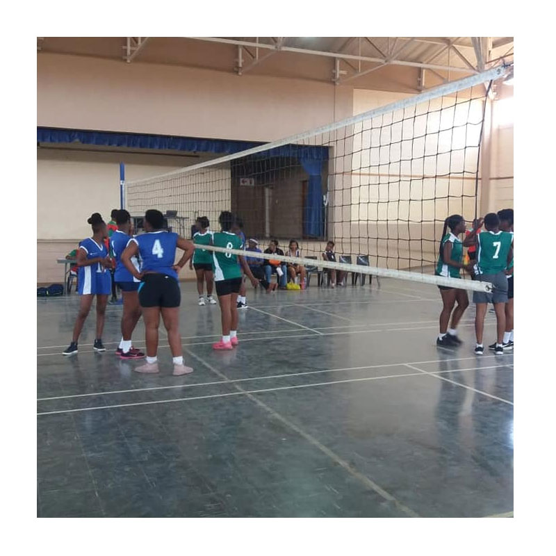 Volleyball Competition Indoor Posts